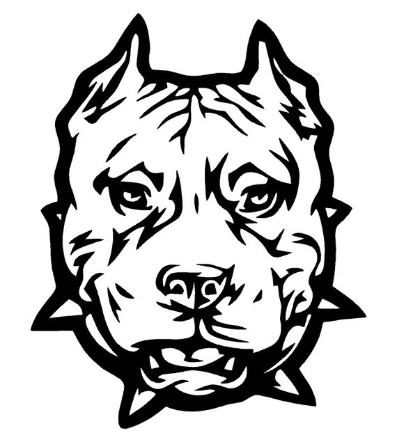 Pitbull clipart mean Decal Pitbull Decal and Car