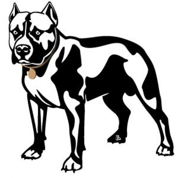 Pit Bull clipart american pitbull Clip Art Pitbull Pit Clipart