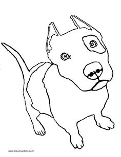 Pitbull clipart coloring page Coloring at Action Free drawings