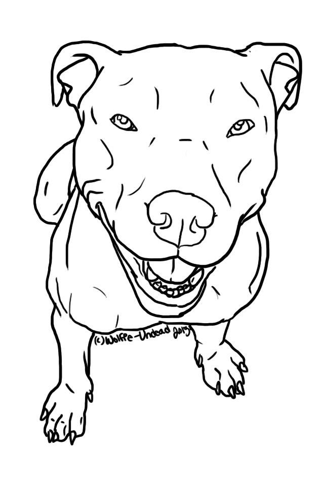 Drawn pitbull wolf Use PLEASE ^ pit USING