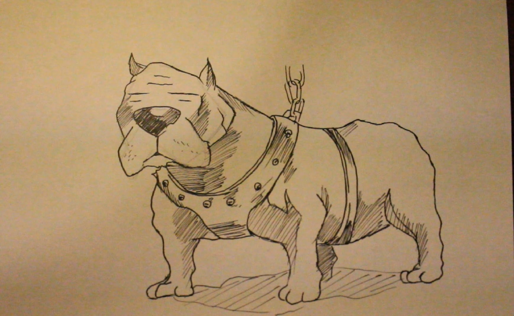 Drawn pitbull gangster Face To Step TopTenTuesday? Draw