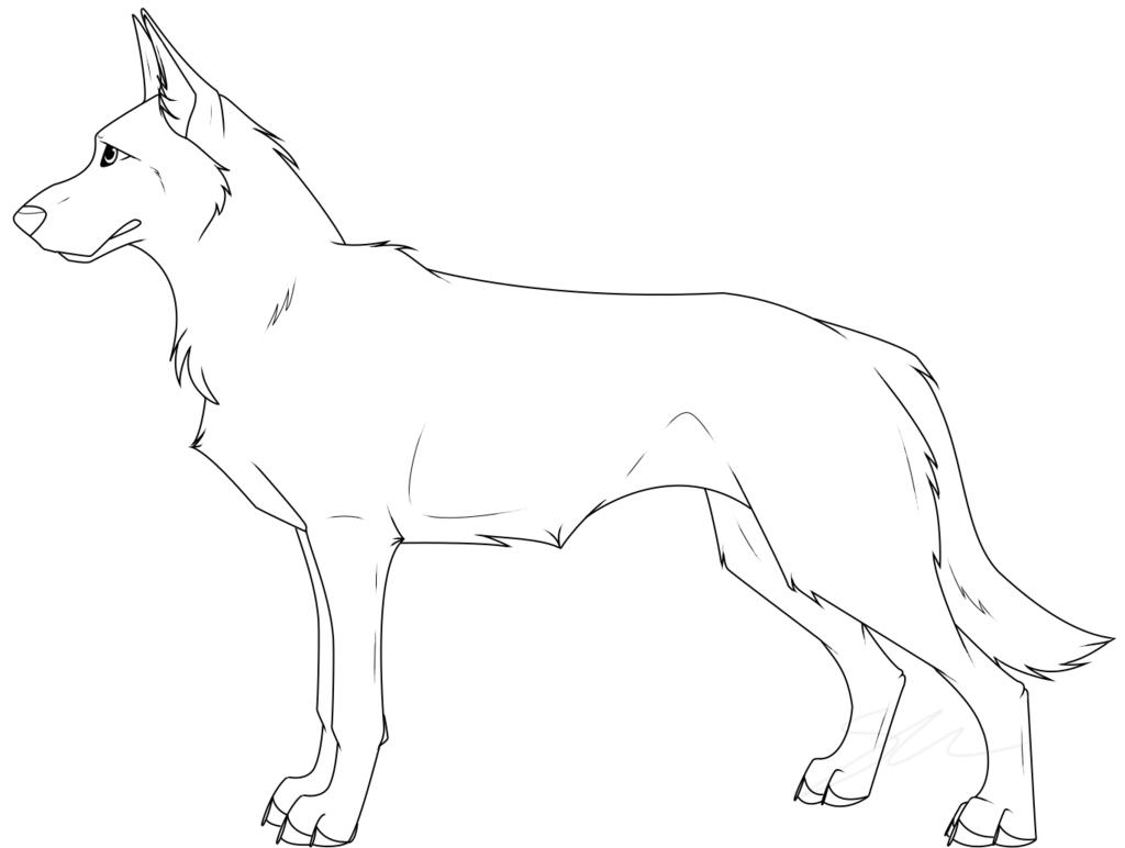 Drawn pit bull german shepherd On Lineart New Italian Italian