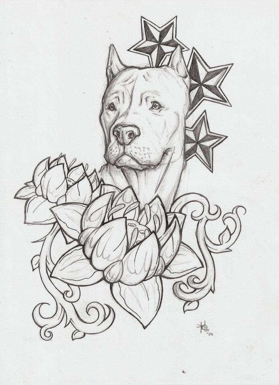 Drawn pitbull gangster Pitbull Birthday  happy pitbulls