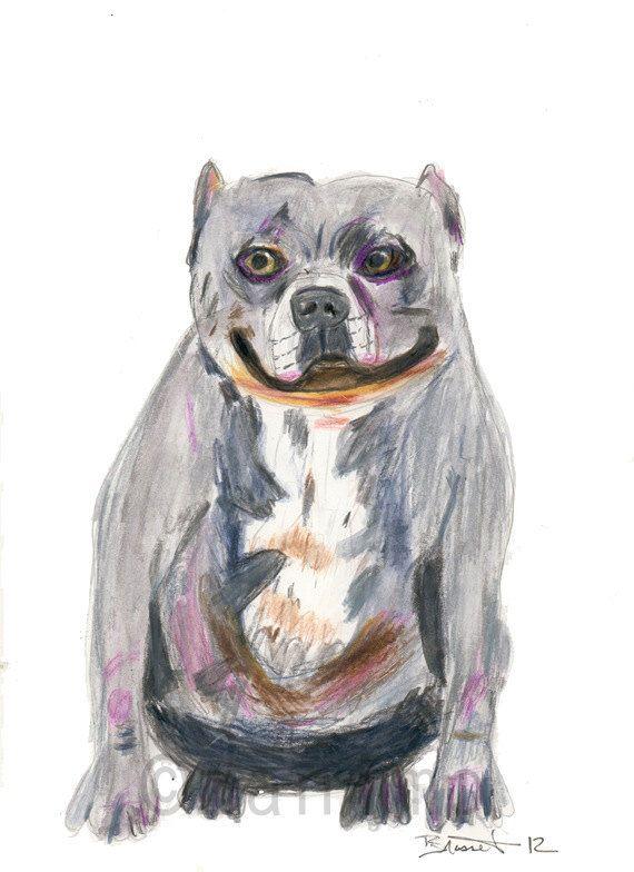 Drawn pit bull pitbul On pitbull Purple of images