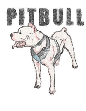 Drawn pit bull pitbul Drawing pitbull pitbull Harlequine a