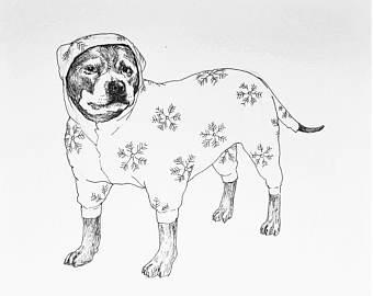 Drawn pit bull pitbul Unique Pitbull Dog Pitbull Bulldog