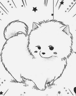 Drawn pit bull pomeranian On best in cute Pinterest