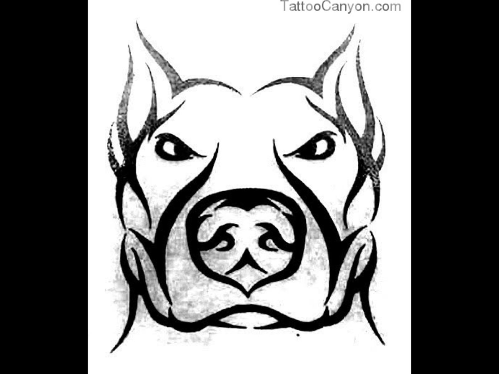 Drawn pitbull gangster Pitbull Nose Download of 1600x1200