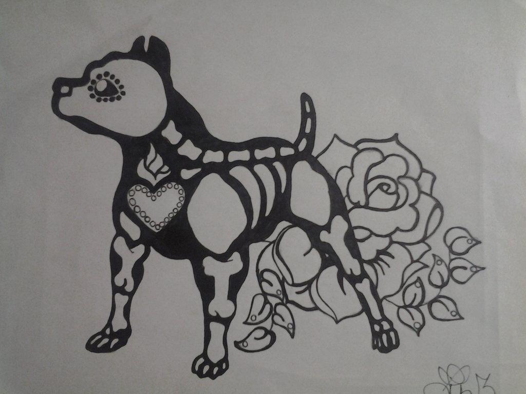 Drawn pit bull skull By lizzyj2217 PitBull by PitBull