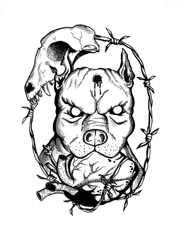 Drawn pit bull skull 0 pitbull by cchhrriis 1