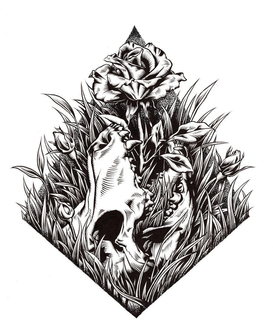 Drawn pit bull skull And Rose Mathews Pitbull Skull