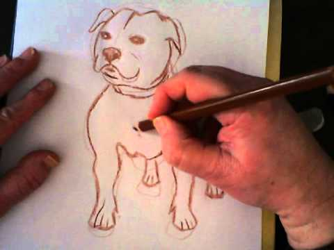 Drawn bull terrier drawing How draw YouTube (Staffordshire) terrier