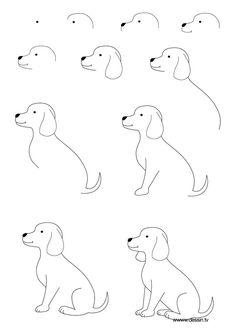 Drawn puppy beginner kid Dog Dog Welsh Pembroke Step