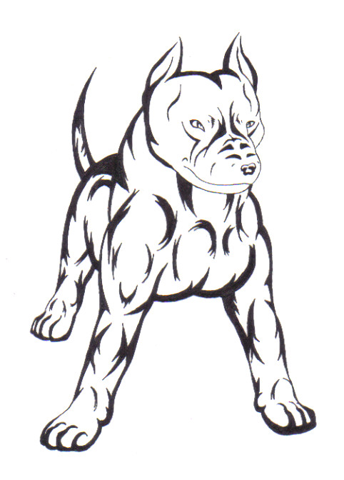 Drawn pitbull wolf 18 the by 2 on