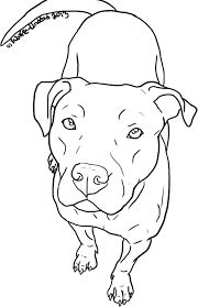 Drawn pitbull Pitbull Résultats « de d'images