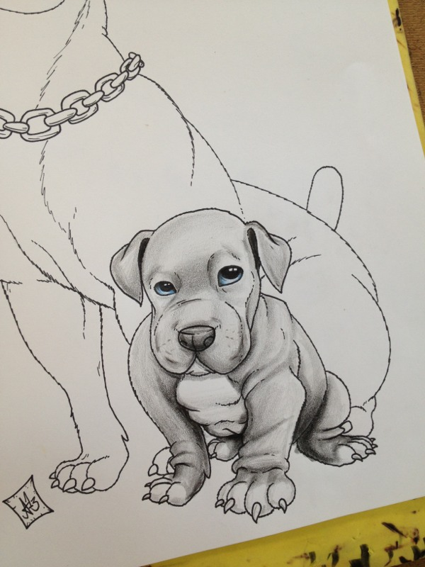 Drawn pitbull pencil drawing Of A Arce Pencil Works