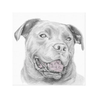 Drawn pitbull spoiled Pit Bull Artwork Art &