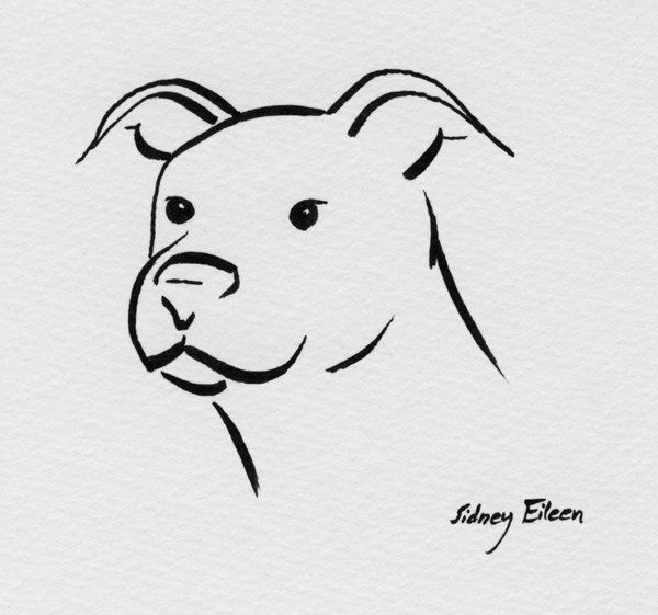 Drawn pitbull wolf Pitbull images best Google drawing