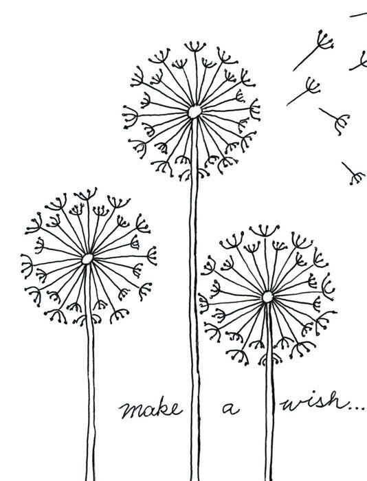 Drawn contrast Draw a on Dandelion ideas