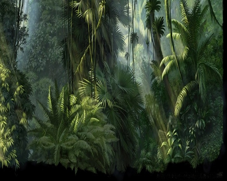 Drawn planets jungle Trees forest JUNGLE fantasy fern