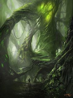 Drawn jungle spooky Forest drawing sunrays fantasy