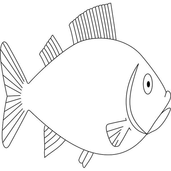 Drawn planks school Best Board Bulletin Welcome Fish