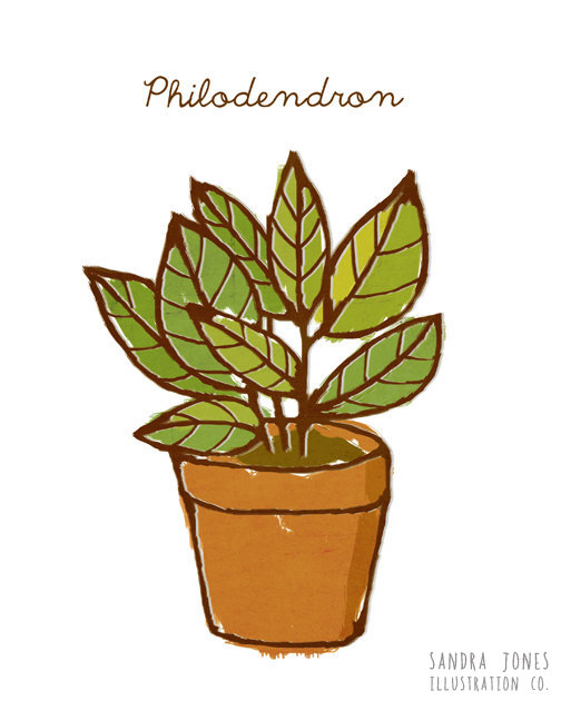Drawn plant Etsy similar to Art on