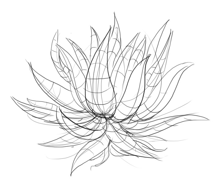 Drawn plant Sketch Google Pin How to