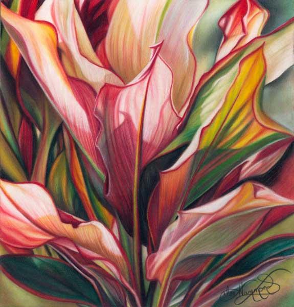 Drawn plant beautiful flower Flowers draw Hammond How flowers