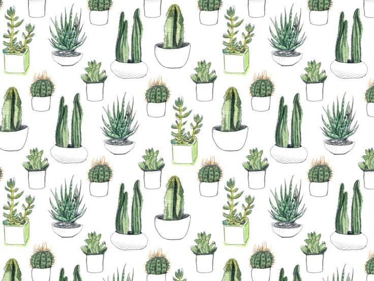 Drawn plant cactus succulent Images Nature: this Succulents Plants