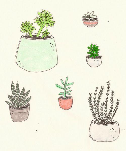Drawn plant cactus succulent Cactus Pinterest DrawingPlant images <3