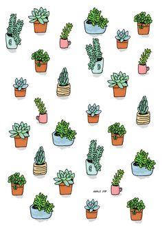 Drawn plant cactus succulent Cactus illustration Pinterest Cactus +