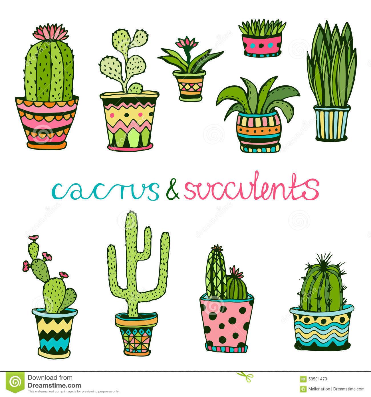 Drawn plant mexican flower Con cacti/succulent #plants Buscar