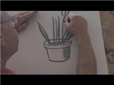Drawn pot plant sketch : Potted Draw Draw :