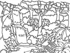 Drawn rainforest cartoon Coloring pages 9 steps pictures)