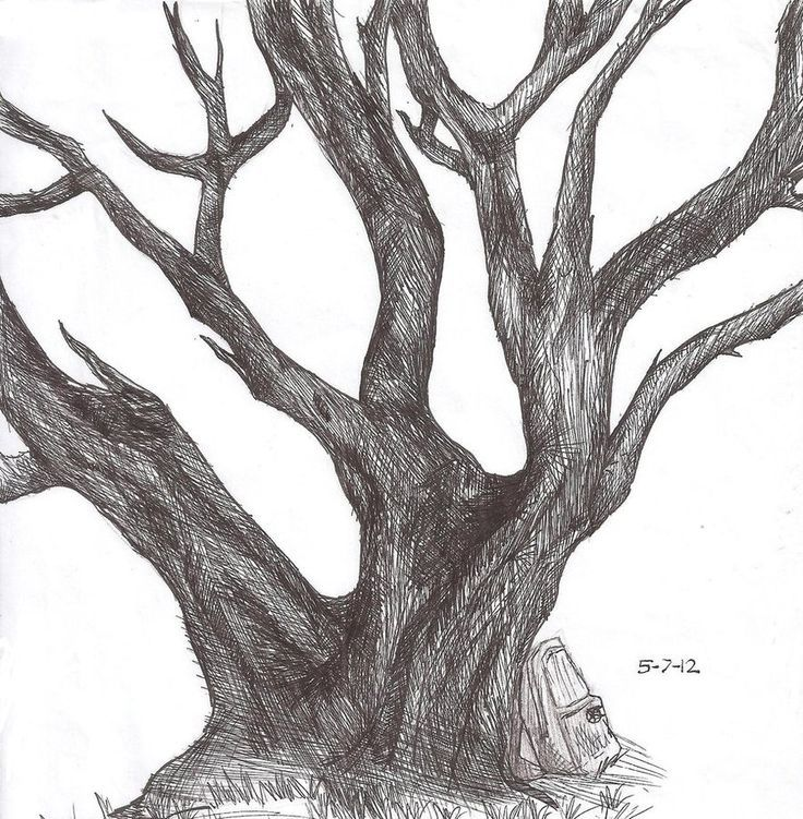 Drawn plant realistic And Plants Realistic 56 How