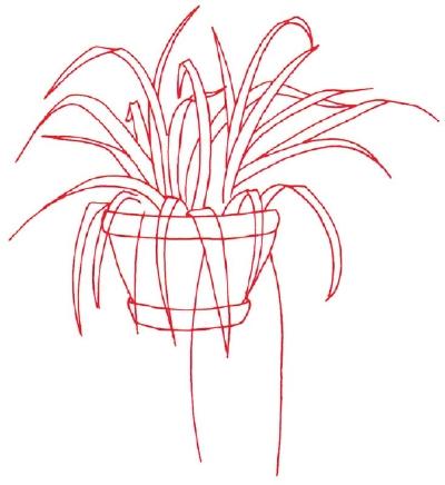 Drawn pot plant sketch The a four How sketch