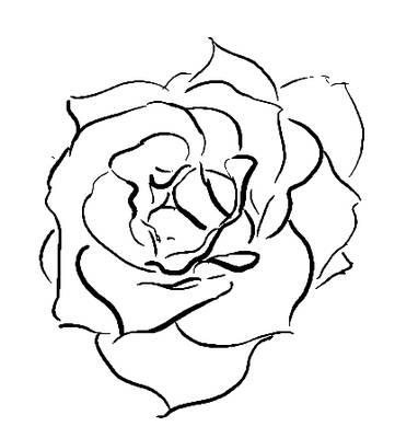 Drawn rose bush yellow rose Drawn Digital Rose Digital Open