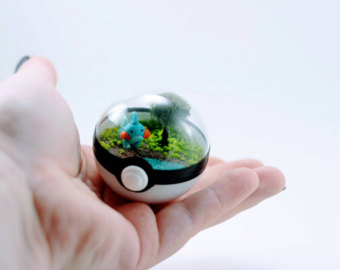 Drawn pokeball marble Terrarium Garden Etsy Environment Fairy