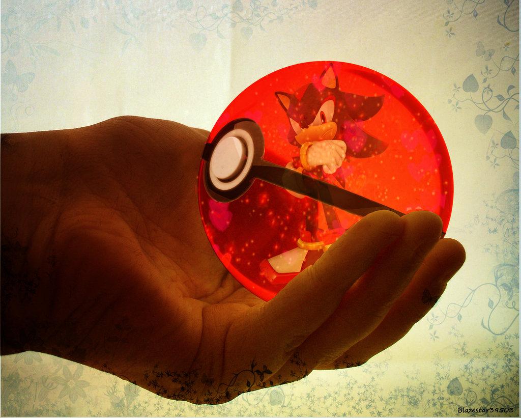 Drawn pokeball shadow Hedgehog on by Team Blazestar39503