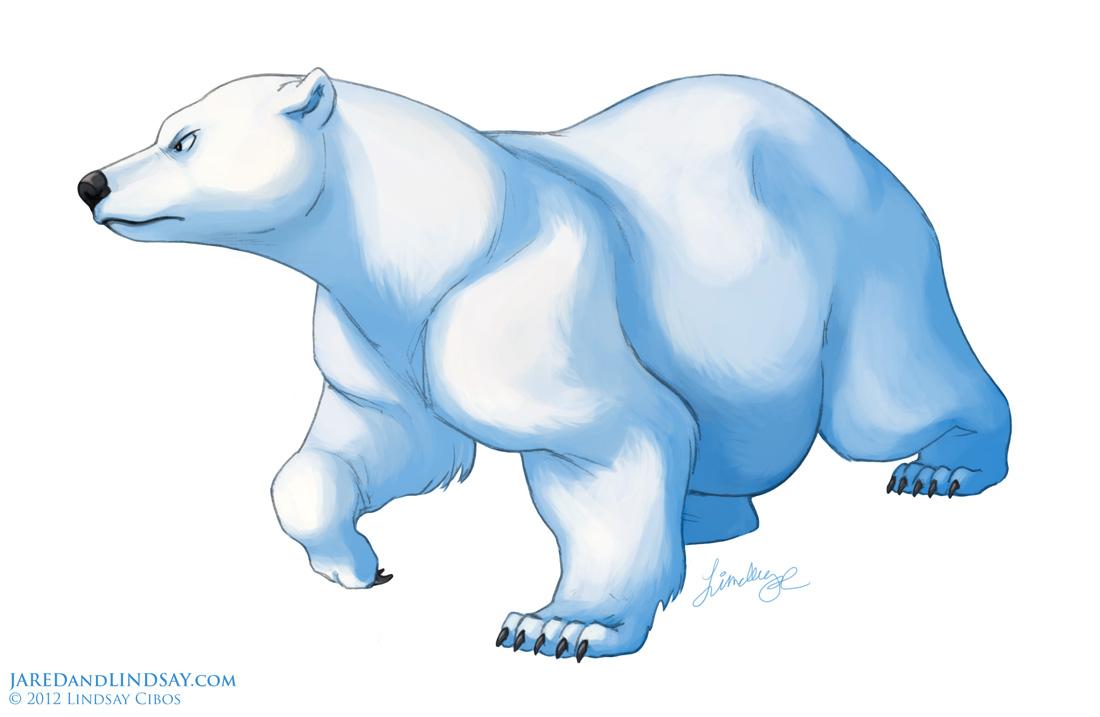 Drawn polar  bear Last Draw How to Step