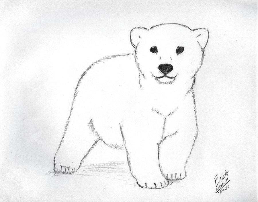 Small clipart polar bear Bear by Polar Cub 25+