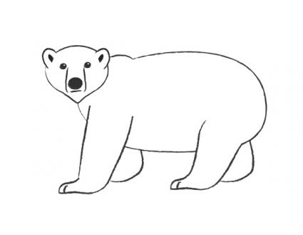 Drawn polar  bear Pencil Pic Bear Drawing Polar