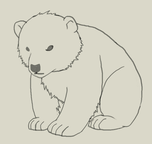 Bear Cub clipart drawn Polar and drawing cub to