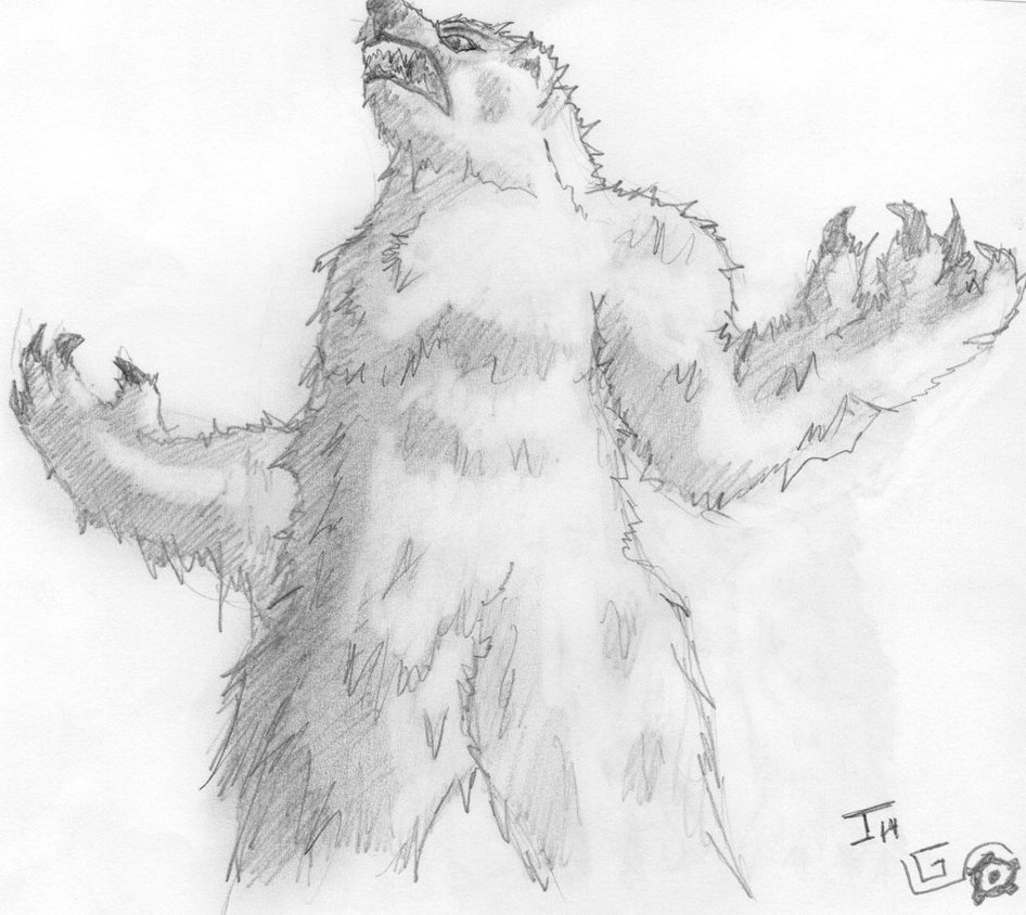 Drawn polar  bear angry Drawing Bear roaring Polar photo#3