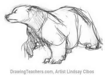 Drawn polar  bear animated #7
