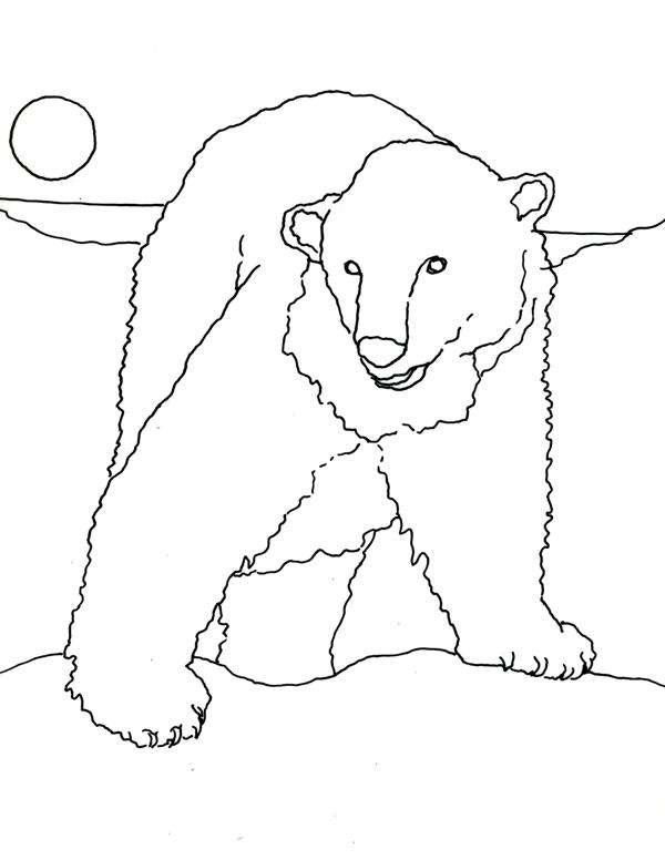 Drawn polar  bear arctic landscape Polar Bear's World polarbearcoloringpage jpg