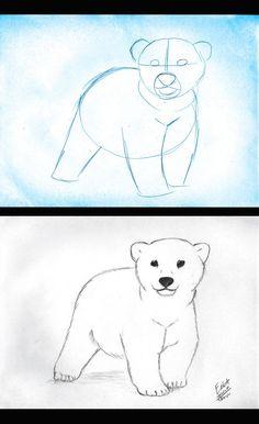 Drawn polar  bear baby animal Photo and Hauru7  New