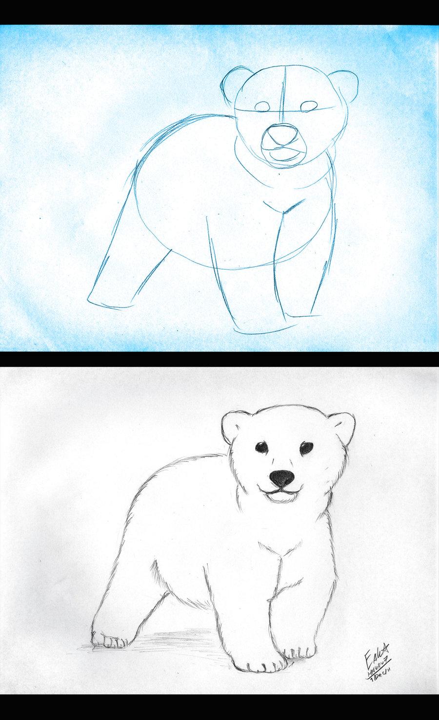 Drawn polar  bear bear cub Bear on  i Cub