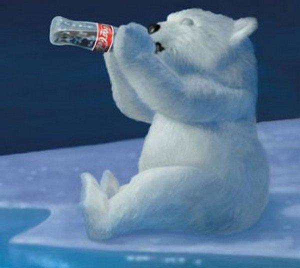 Drawn polar  bear coca cola #5